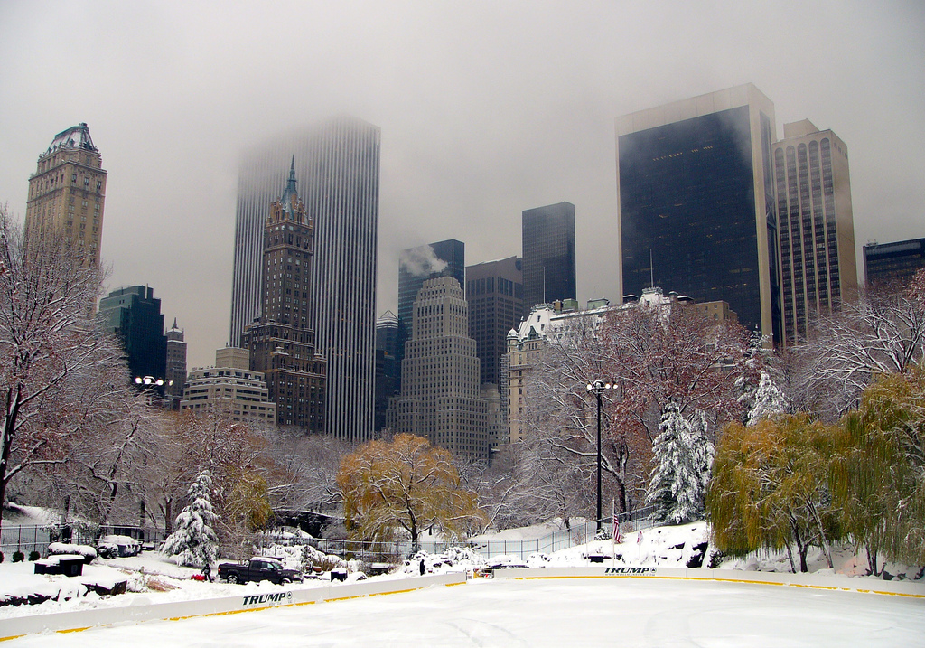 images of central park new york city. New York City launches winter
